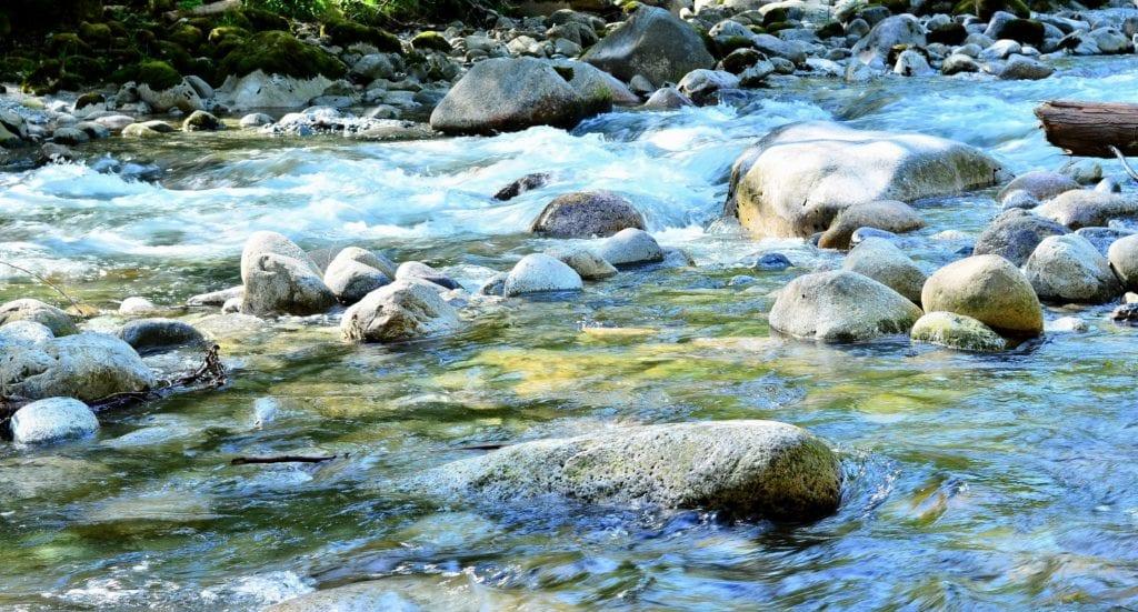 closeup of river rushing over rocks