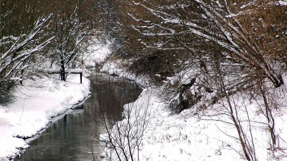 creek runs through a snowy forest