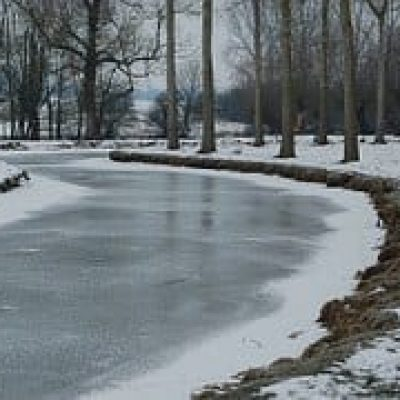 frozen river in a forest